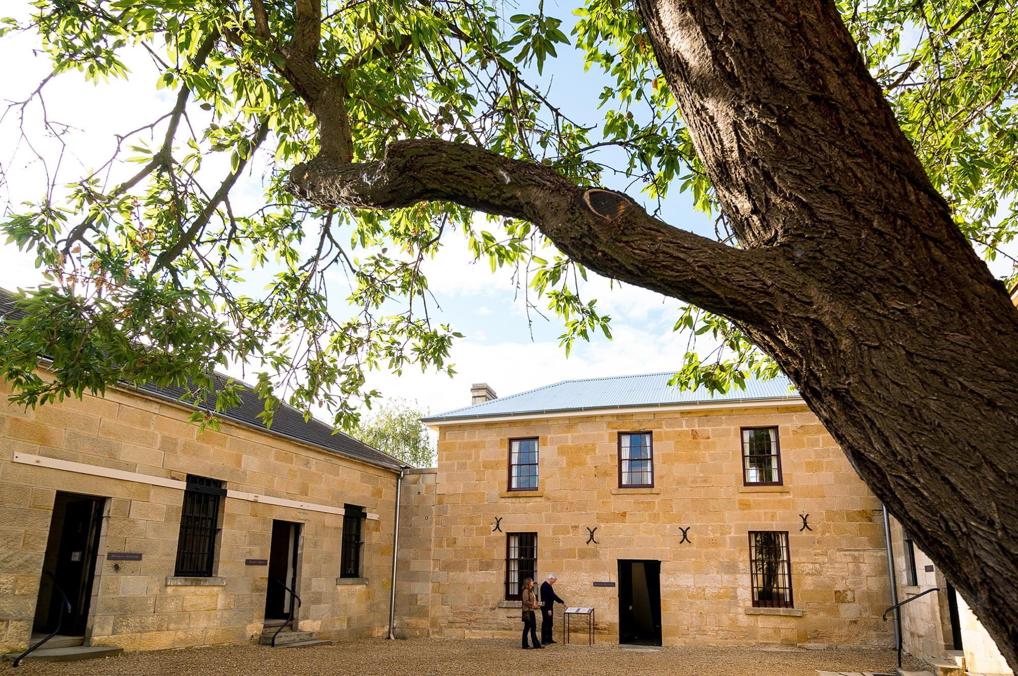 Richmond Gaol central courtyard, tree in foreground, historic buildings behind