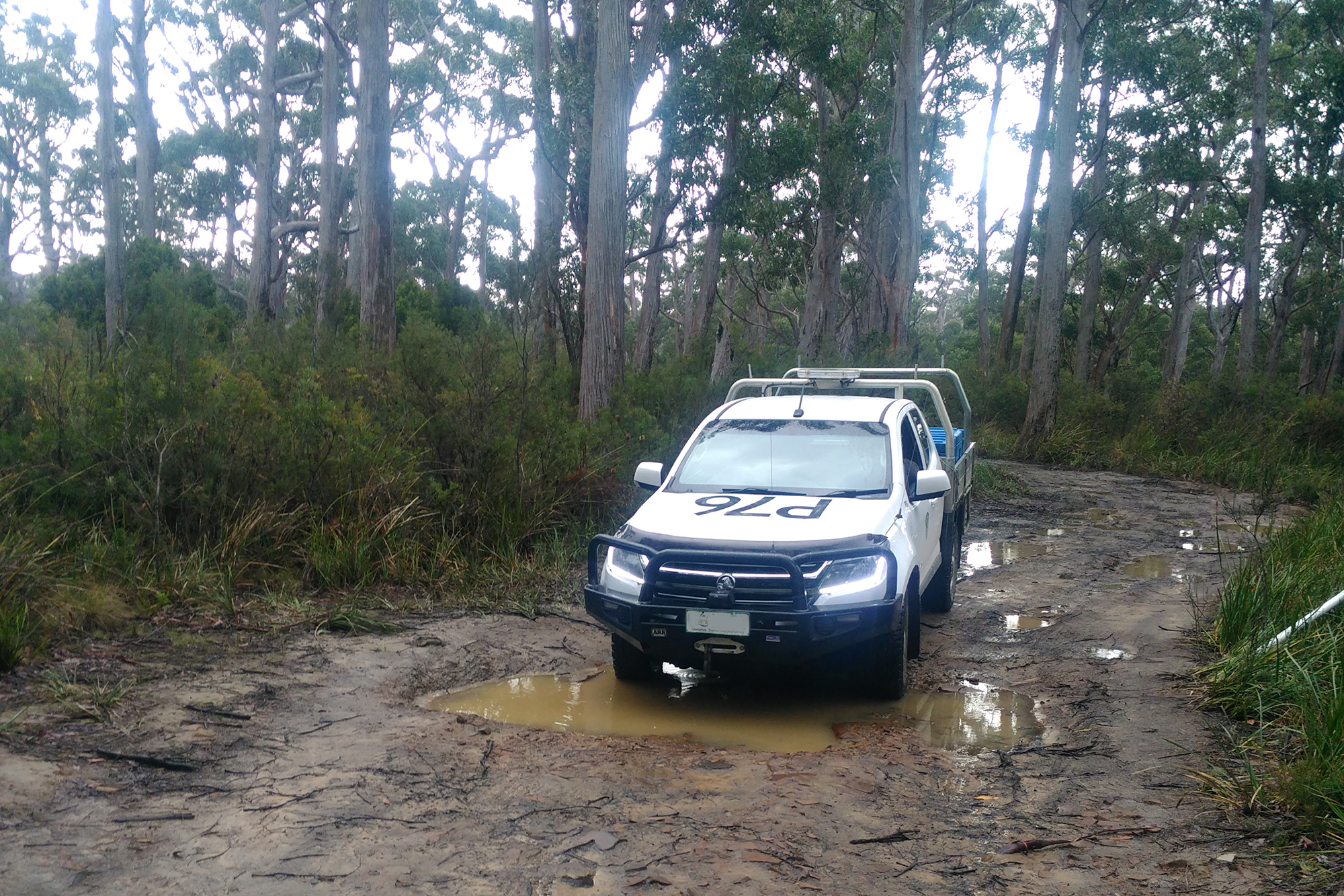 The 4 wheel drive track to Southport Lagoon