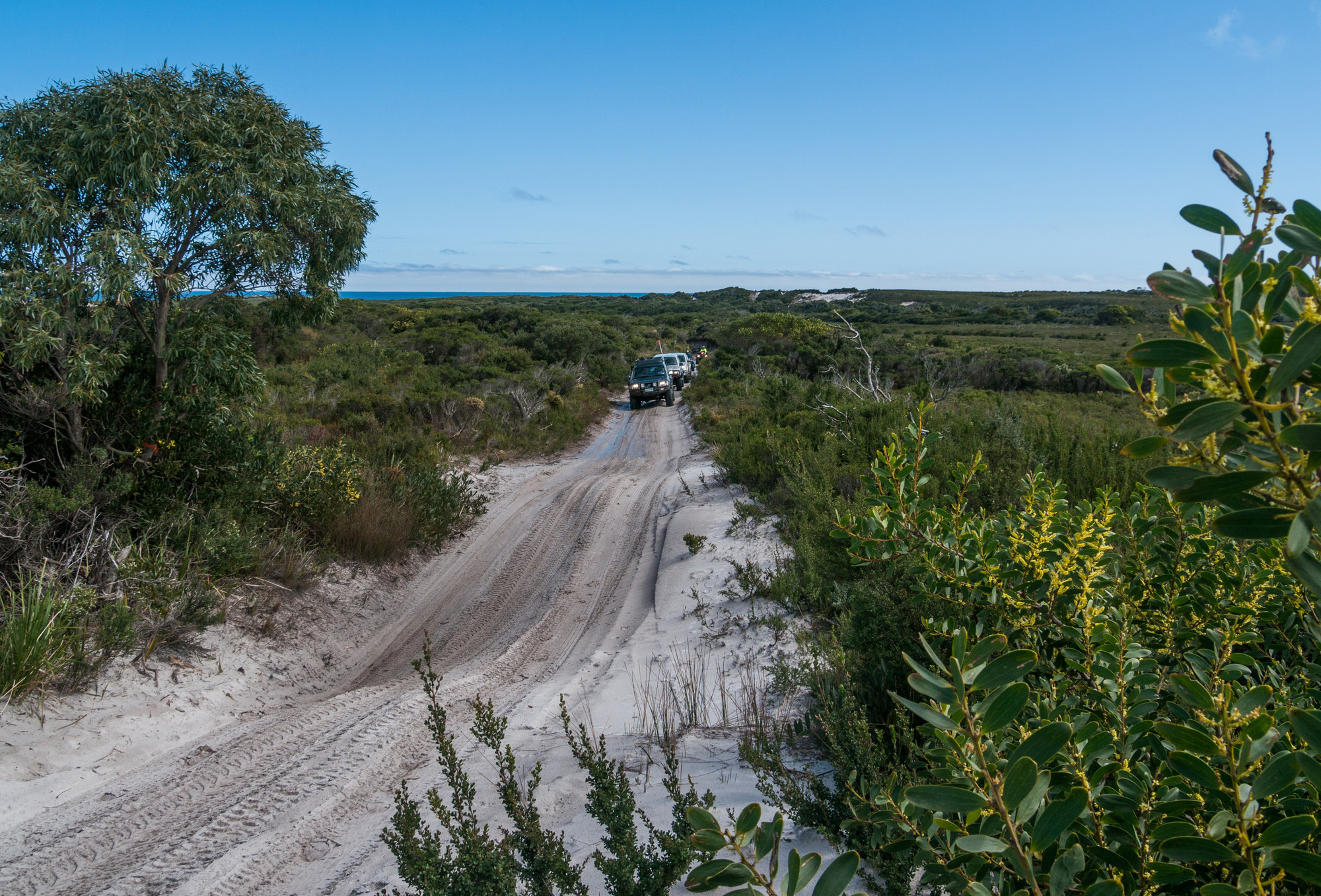 4WD vehicles driving along a very sandy coastal track