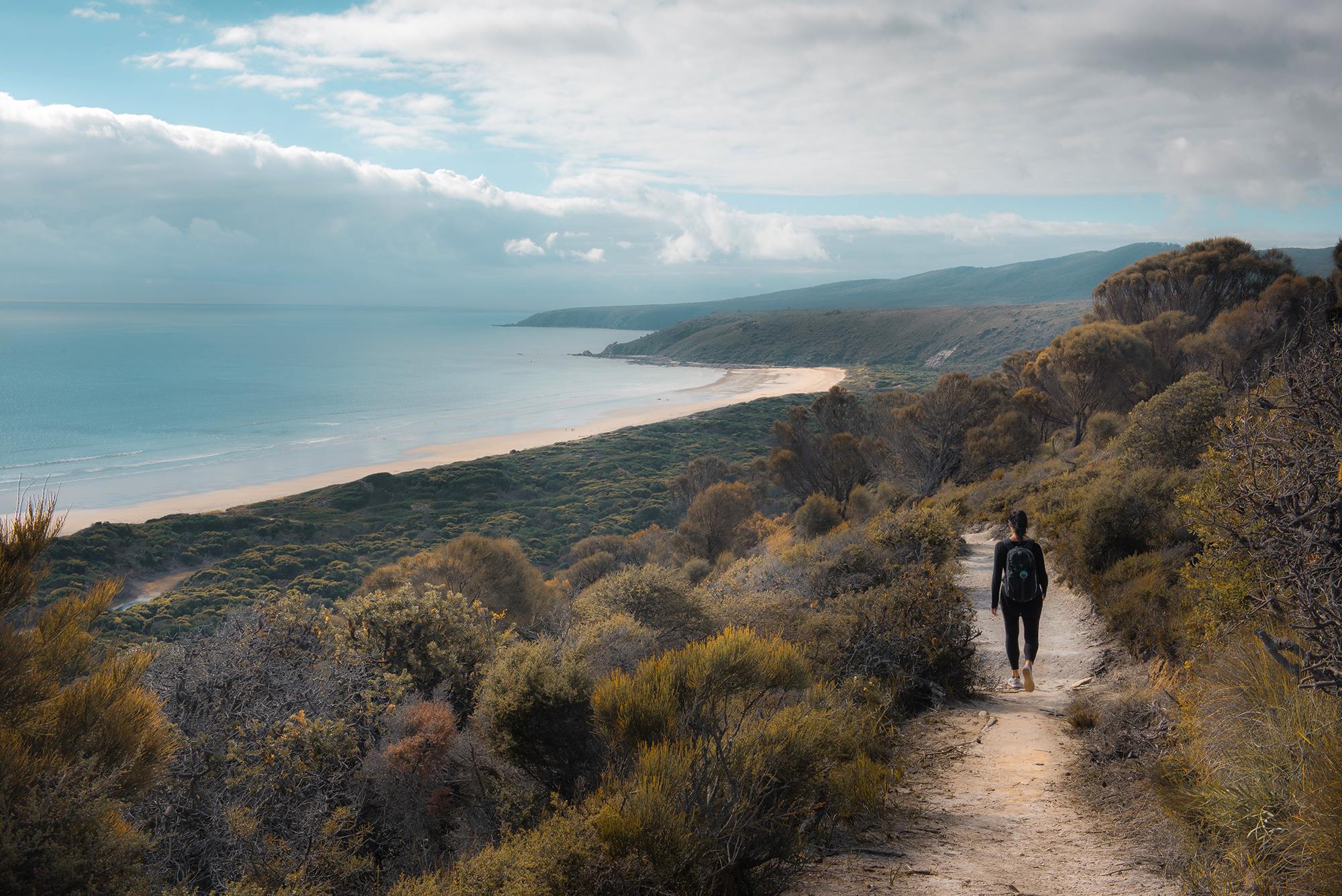 A walker on the track from Archer knob to Bakers Beach in Narawntapu National Park.